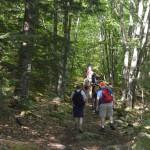 TSP Hike 022